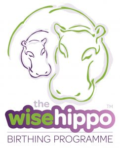 Wise Hippo